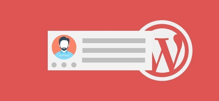 How to Add Author Box in WordPress with or without Plugin - Schema Optimized