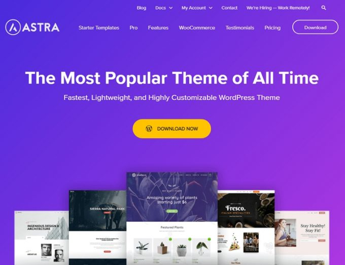 Best WordPress Theme for Business - Astra
