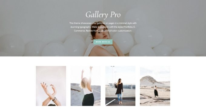Theme for Display Galleries, Photography - Gallery Pro